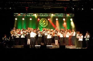 Fiddlers' Assoc from Celtic Colours WEB version